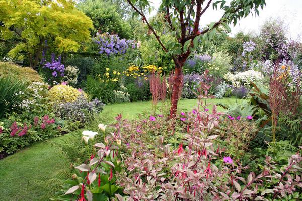 Grandmothers garden 2