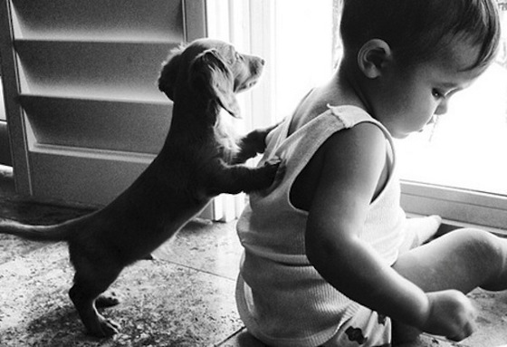 dog_and_child
