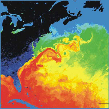 Surface temperature in the western North Atlantic. North America is black and dark blue (cold), the Gulf Stream red (warm). Source: NASA