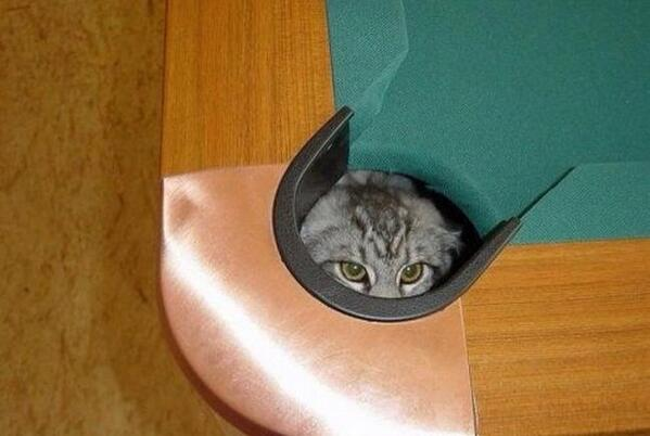 CornerPocket