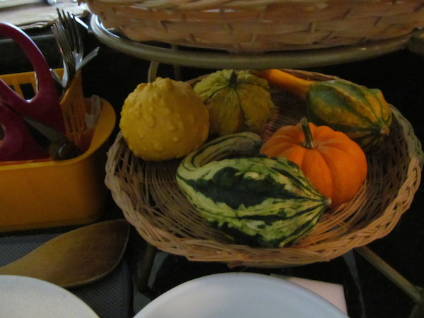 mini-gourds