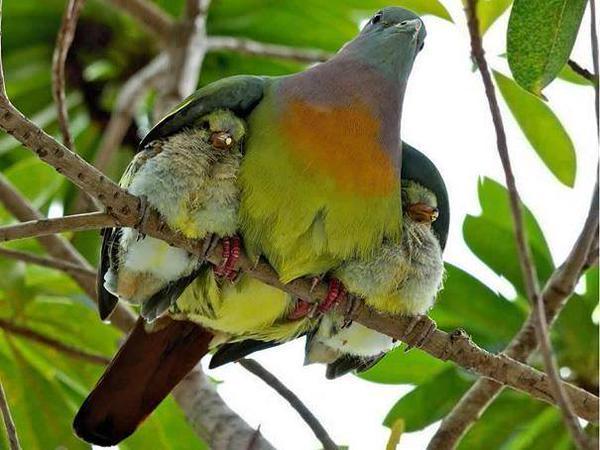 keeping baby warm links