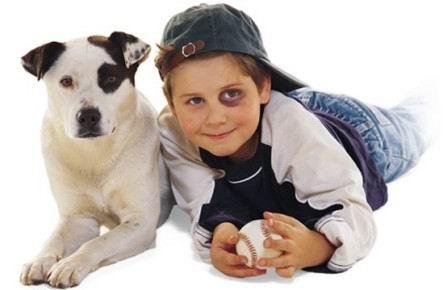 links dog and boy