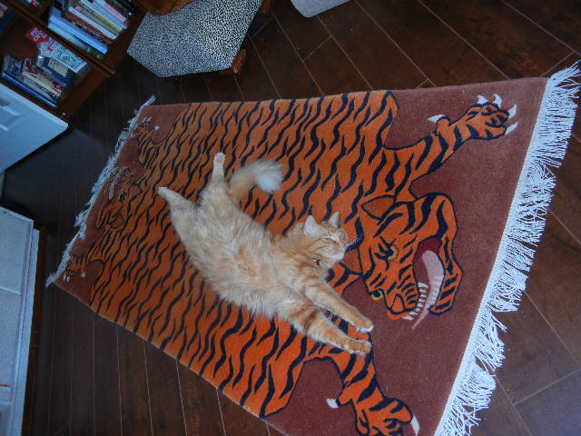 Lion boy and the tibetan tiger rug links