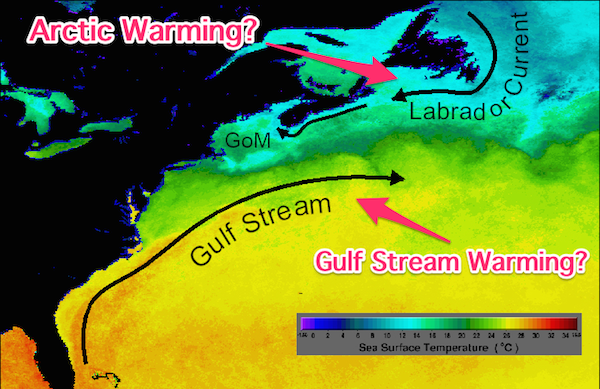 gulf_of_maine_currents
