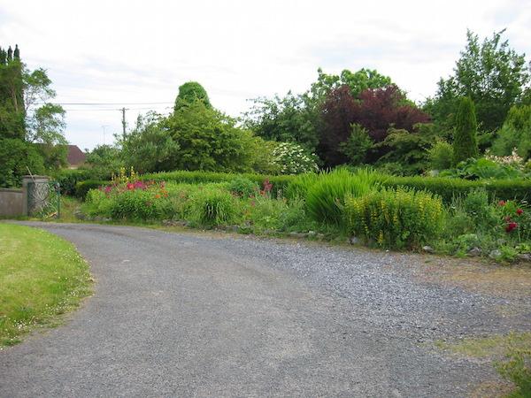 Herbal Teachers Garden, Mullingar (2)