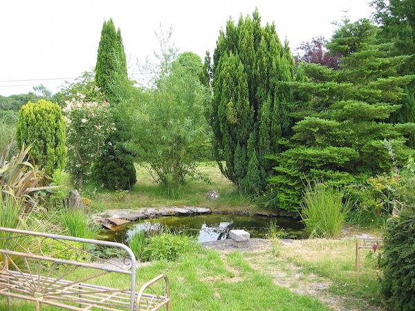 Herbal Teachers  Garden, Mullingar (5)