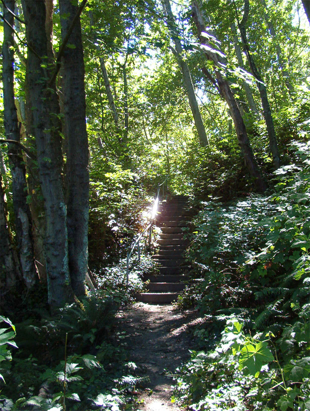 Magic Stairway
