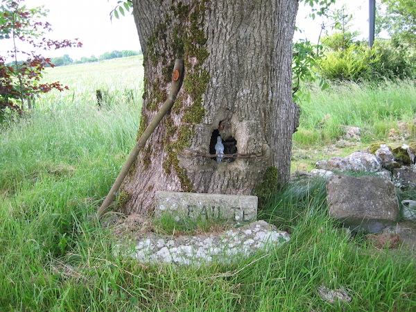 Holy Well near Uisneach C0Westmeath