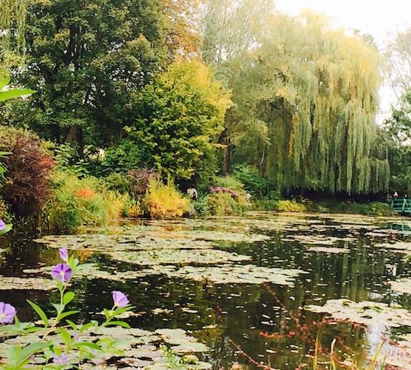 monet_waterlilies