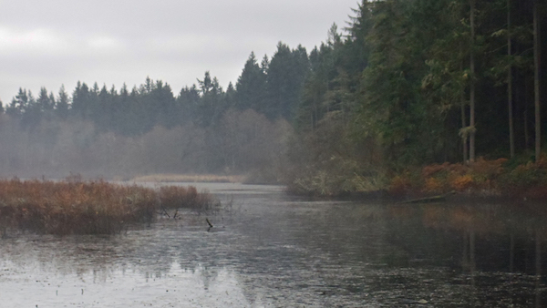 Ice on Fisher Pond Late December 2011