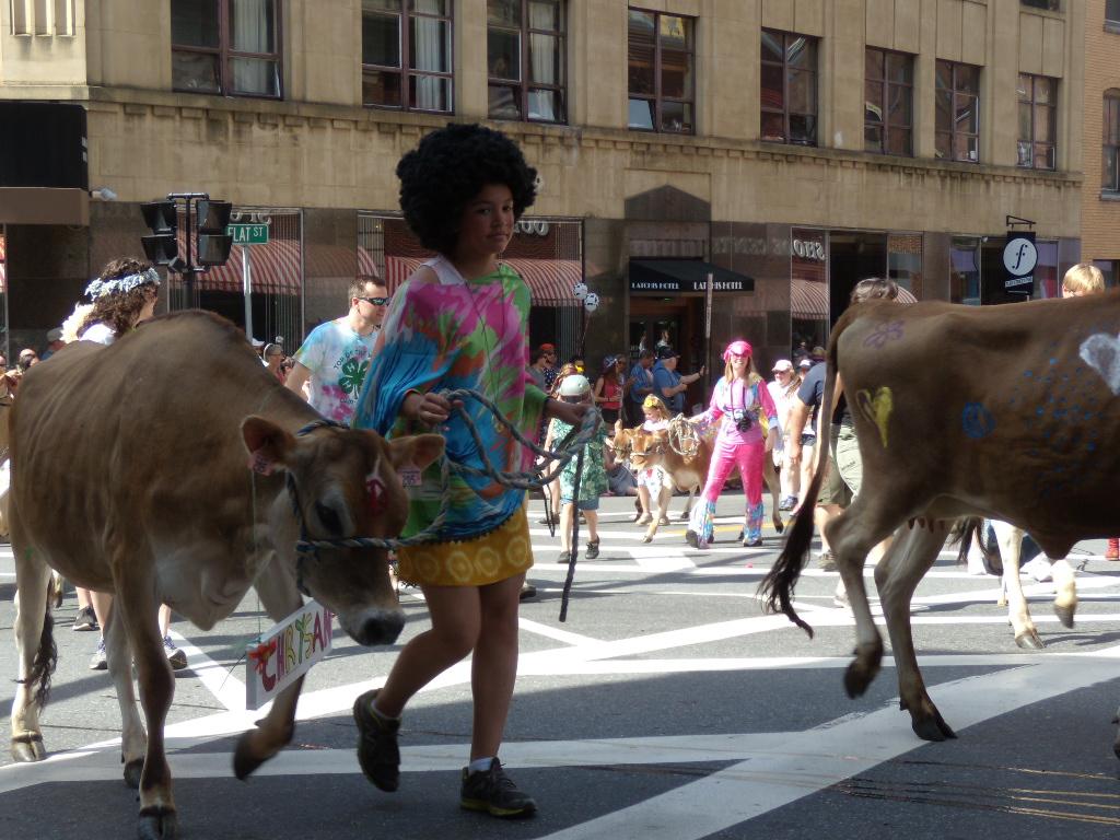 heifer fair links