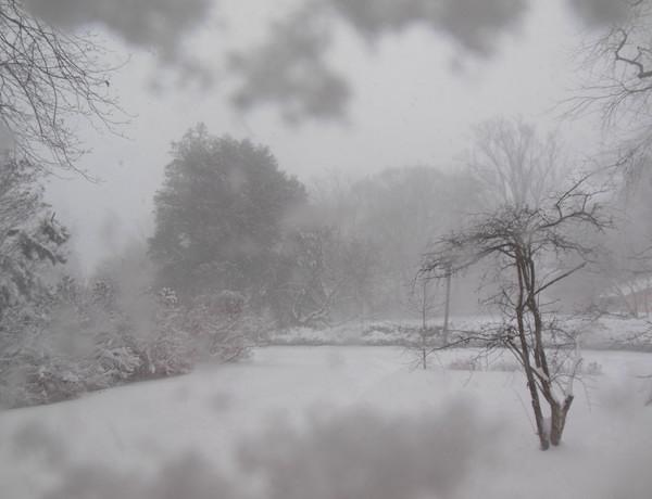 snow_through_the_window