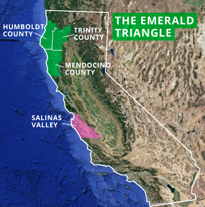 The High Price of Cheap Cannabis | capitalism Map Of Emerald County on map of forest fires, map of ambergris, map of bay village, map of log country cove,