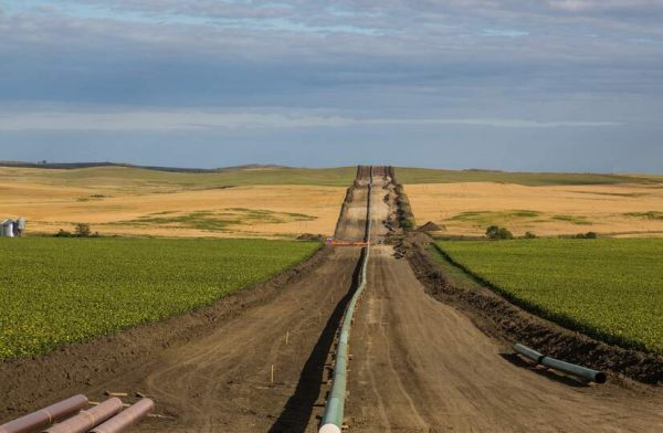 Fossil Fuel Interests Applaud Trump Administration's Weakening of Major Environmental Law - RapidAPI