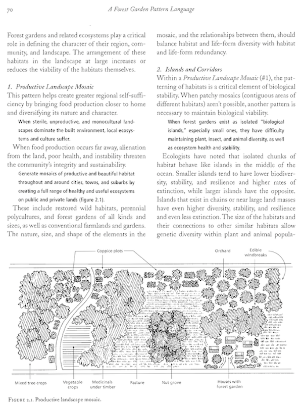 Edible Forest Gardens: A Quick Review of a Very Beautiful and Useful Book 3