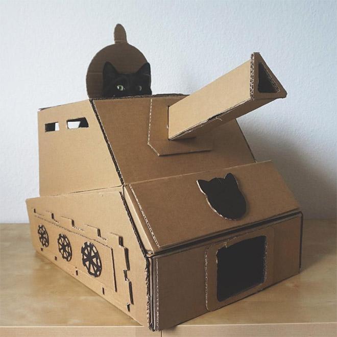 Quarantine Cat Tricks 3