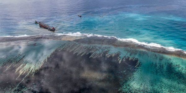 Mauritius oil spill: Dolphins dead after MV Wakashio scuttled